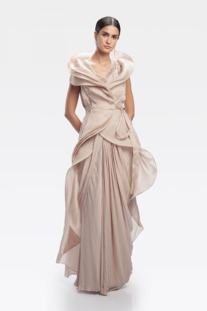 Light Toosh Organza Cape Saree Gown